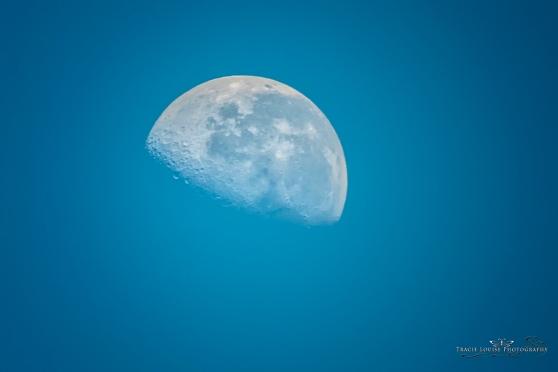 daylite moon